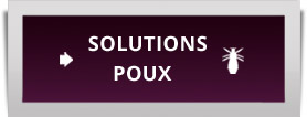 solutions anti-poux